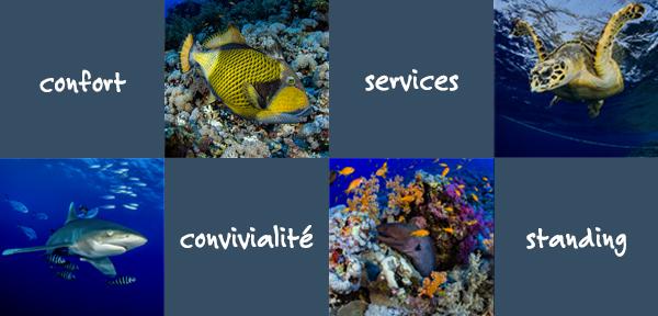 Confort, convivialité, services, standing
